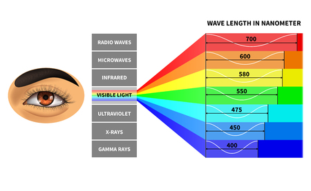 Visible light spectrum. Color waves length perceived by human eye. Rainbow electromagnetic waves. Educational school physics diagram. Scheme nanometer, rays electromagnetic spectrum illustration 版權商用圖片 - 127269396