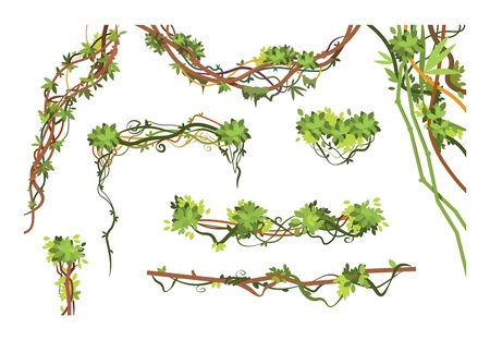 Jungle vine branches. Cartoon hanging liana plants. Jungle climbing green plant vector collection. Illustration of liana branch plant, leaf flora hang Vettoriali