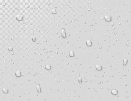 Water rain drops. Droplets on transparent wet glass window. Photorealistic water shower drops vector background. Illustration of clear droplet on glass transparent