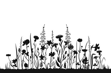 Siluetas de flores silvestres. Campo de primavera de hierba salvaje. Fondo de vector de verano a base de hierbas. Flores silvestres en el prado, ilustración de silueta negra de planta botánica