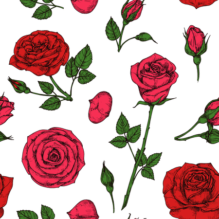 Roses pattern. Red blossom rose flowers bouquet. Floral seamless vector drawing pattern. Illustration of red rose background, seamless pattern bouquet Vetores
