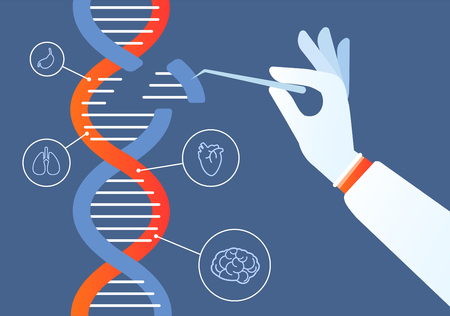 Dna engineering. Genome crispr cas9, gene mutation code modification. Human biochemistry and chromosomes research vector concept. Illustration of gene engineering, mutation code genetic