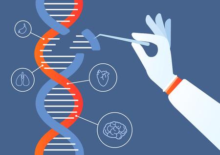 Ingeniería de adn. Genoma crispr cas9, modificación del código de mutación genética. Concepto de vector de investigación de cromosomas y bioquímica humana. Ilustración de ingeniería genética, código de mutación genética. Ilustración de vector