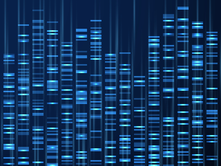 Genomic data visualization. Dna genome sequence, medical genetic map. Genealogy barcode vector background. Illustration of visualization dna, genetic and genealogical texture 矢量图像