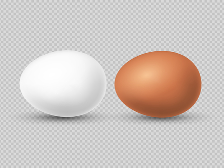 Realistic brown and white chicken eggs vector illustration. Chicken eggs for easter and eat Illustration