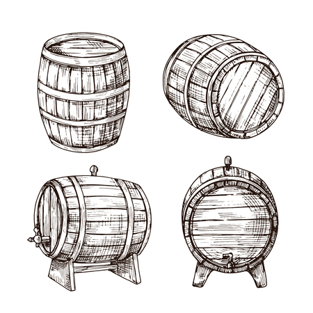 Sketch barrels. Whiskey oak casks. Wooden wine barrel in vintage engraving style. Bar, pub and brewery vector sign isolated. Illustration of cask wood, winery drink and whiskey keg