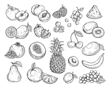 Frutti di schizzo. Melone alla fragola, mango alla pesca. Ananas banana, uva lampone insieme di vettore di bacche di frutta disegnata a mano. Illustrazione di melone e banana, ciliegia e limone Vettoriali