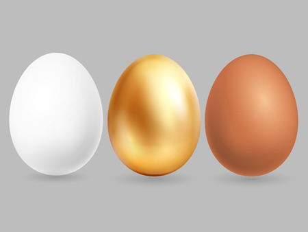 Three realistic eggs isolated on grey background. Vector eggs chicken golden, brown and white illustration