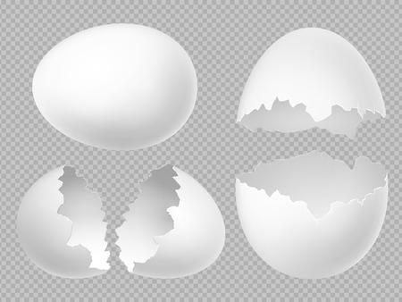 Vector realistic white eggs set with whole and broken eggs isolated on transparent background. Illustration of eggshell, shell from broken egg