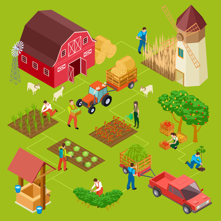 Fruits and vegetables farm, isometric gardening vector concept. Illustration of barn and mill, hay and tractor, agriculture gardening Çizim