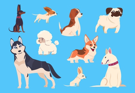Cartoon dogs breeds. Corgi and husky, poodle and beagle, pug and chihuahua, bull terrier. Comic pet animals vector characters isolated. Illustration of terrier dog, pet poodle and chihuahua Stock Illustratie