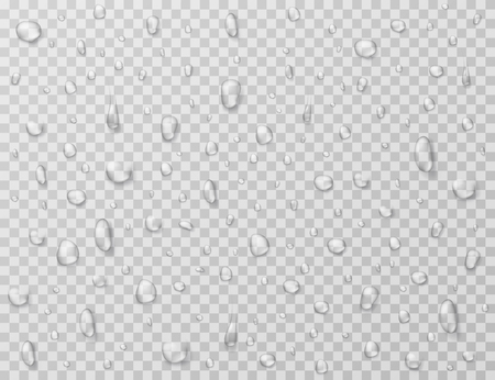 Water drops isolated. Rain drop splashes, droplets on glass transparent window. Raindrop vector texture. Rain droplet, raindrop aqua bubble illustration