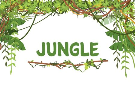 Jungle exotic leaves and lianes vector background. Tropical nature tree forest, jungle plant summer with place for text illustration