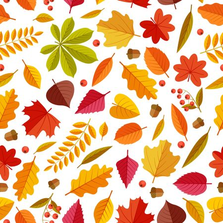Autumn leaves pattern. Abstract repeating fall leaf, colorful foliage texture for wallpaper and gift cards, seamless vector print. Illustration pattern botany dry leaf, forest foliage plant