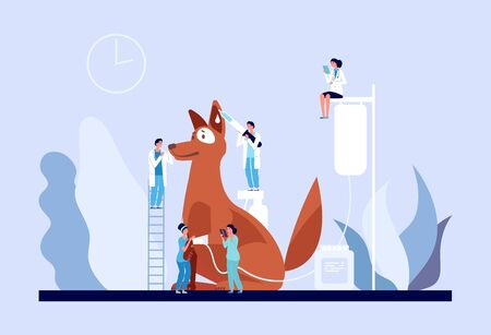 Veterinary concept. Veterinarian clinic, tiny doctors caring puppy. Vet services for pets, medical care for dog vector illustration. Dog visit veterinary veterinarian specialist examination