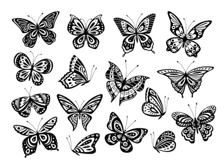 Black butterflies. Drawing butterfly silhouette, nature elements. Gorgeous artwork ornate wings different forms. Isolated tattoos vector set. Butterfly insect, silhouette butterfly illustration Stockfoto - 139384471