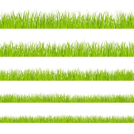 Green grass. Landscaped lawns, meadows border clipart. Isolated organic pasture or garden objects shapes. Lush herb vector seamless pattern. Grass herb lawn, meadow green seamless illustration Ilustração
