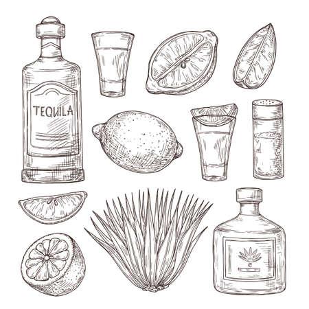 Agave tequila sketch. Vintage glass shot, bar ingredients and plant. Isolated drawing alcohol bottle, salt lemon or lime vector illustration. Tequila sketch bottle, drink alcohol design drawing
