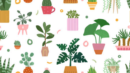 Succulent pattern. Home plants on pots background. Doodle cacti palm isolated. Scandinavian floral garden vector seamless texture. Floral and flower, botanical plant garden seamless illustration