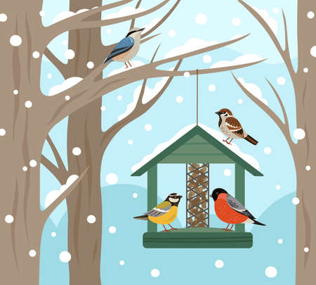 Winter feeder. Snow woodland, birds food on tree poster. Feeding wild animals on nature, flat bullfinch chickadee robin vector illustration. Birdwatching and birdhouse, feeding house