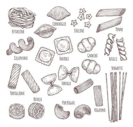 Sketch pasta. Hand drawn italian menu, authentic restaurant food types. Isolated sketch penne fusilli fettuccine, dish ingredient vector set. Italian pasta hand-drawn, design spaghetti illustration