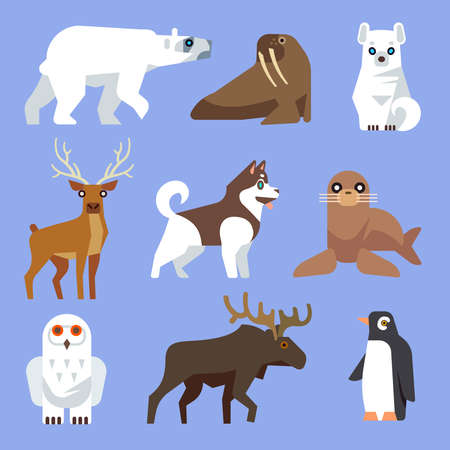 North Arctic or Antarctic animals and birds. Vector flat collection