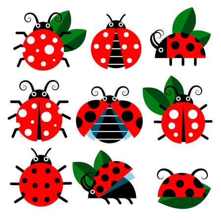 Cute ladybug vector icons. Cartoon-style bugs and leaves. Cartoon insect graphic illustration