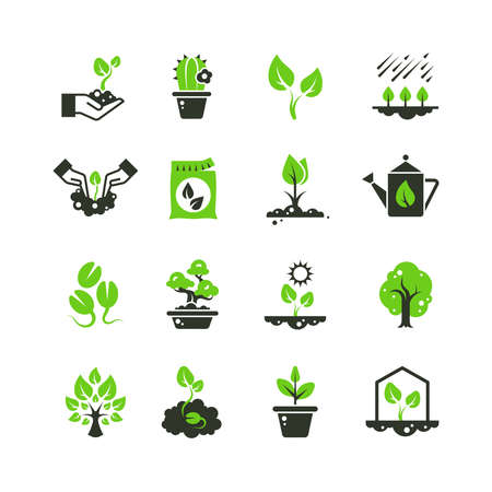Tree sprout and plants vector icons. Seedling and hand planting pictograms. Seedling and growth tree, gardening and growing illustration Vector Illustration