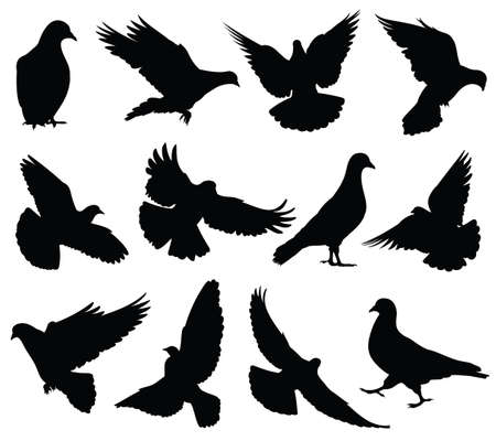 Flying dove vector silhouettes isolated. Pigeons set love and peace symbols. Black shape form dove and pigeon silhouette illustration