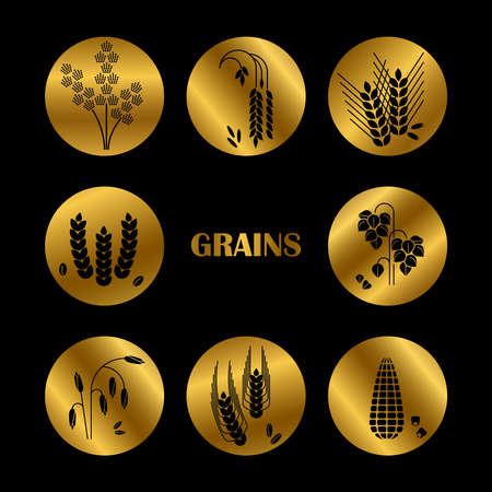 Black grains silhouette on golden background. Vector cereals icons collection illustration
