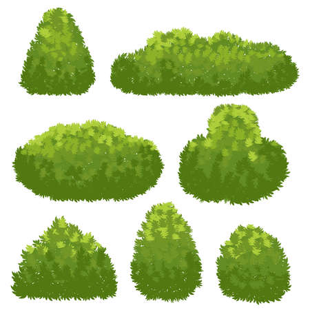 Nature hedge, garden green bushes. Cartoon shrub and bush vector set isolated on white background. Landscape plant environment, spring shrubbery for park illustration