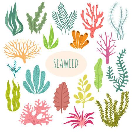 Seaweeds. Aquarium plants, underwater planting. Vector seaweed silhouette isolated set. Illustration of aquatic plant, nature wildlife Vecteurs
