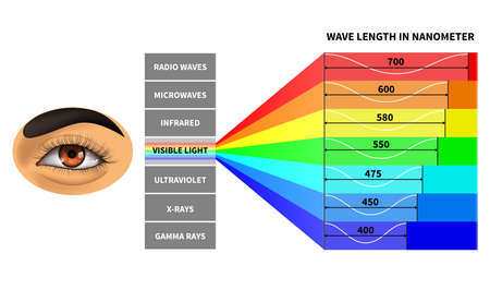 Visible light spectrum. Color waves length perceived by human eye. Rainbow electromagnetic waves. Educational school physics diagram. Scheme manometer, rays electromagnetic spectrum illustration