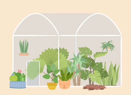 Glass greenhouse garden. Plants gardening, green tree and bushes. Succulents flower bed, botanical plantation, urban rustic jungle vector. Illustration greenhouse, cactus and hothouse to gardening