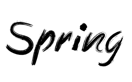 Spring text written by hand in grunge letters in bold font isolated on white background. Spring hand sketched logotype, retro, vintage lettering banner, poster, template background, badge.