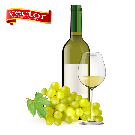 Ripe grapes, wine glass and bottle of wine isolated vector illustration
