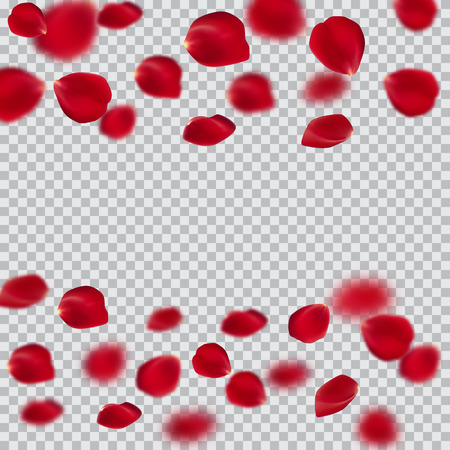 Red rose petals set, isolated on white, vector illustration. For the design of invitations and postcards on the day of Saint Valentine.