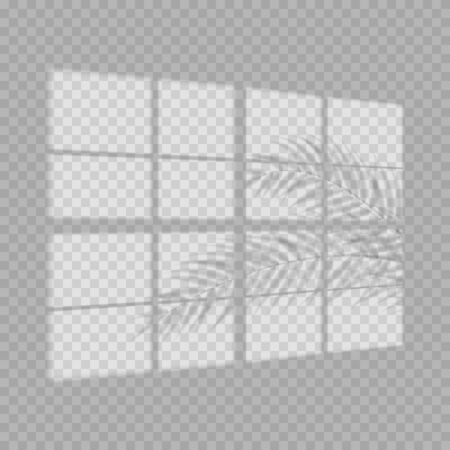 Transparent shadow overlay effect. Tropic leaf and window blind. Realistic window light and shadow. Shadow overlays effect for mock up presentations. Photo-realistic illustration with palm leaves.