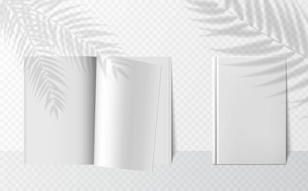 Transparent shadow overlay effects for branding. Scenes of natural lighting. Vector realistic books mockups. realistic shadow from palm tree branch on book mockup on transparent background