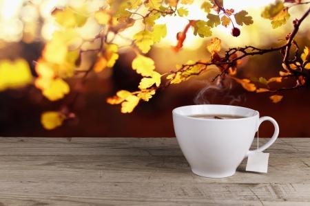 english breakfast tea: Cup of hot tea on background lanscape summer autumn