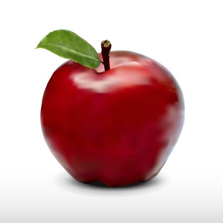actual: apple fruit realistic design in vector format