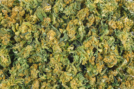 Marijuana bud group top view
