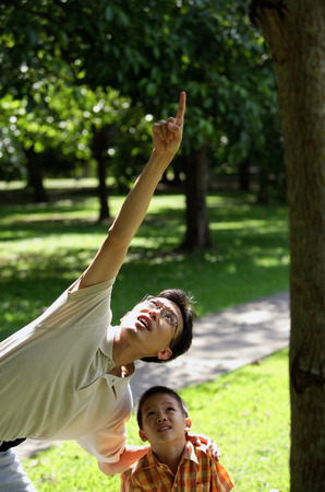 Father and son in park, father pointing up
