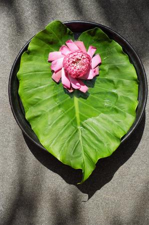 Flower sitting on petals and leaf 版權商用圖片
