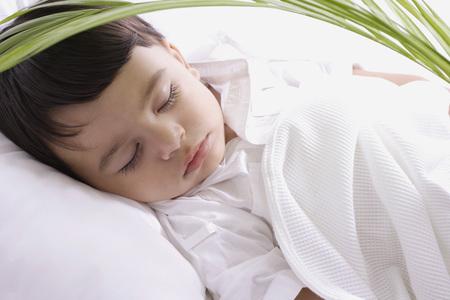 baby boy sleeping under plant