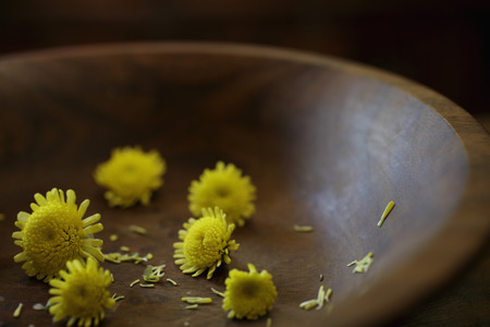 Close up of chrysanthemum flowers in wooden bowl.