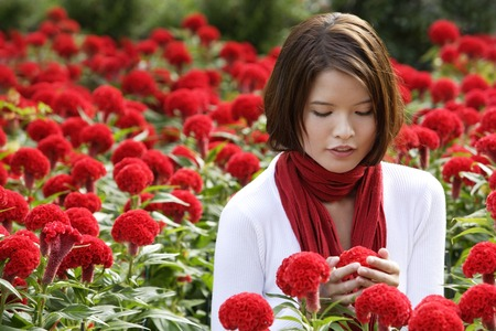coxcomb: Young woman among red flowers (coxcomb)