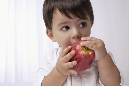 european ethnicity: baby boy eating apple LANG_EVOIMAGES