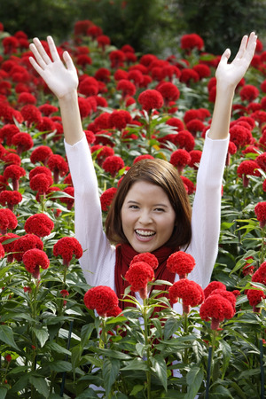 Young woman among red flowers (coxcomb)