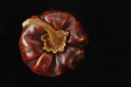 Dried chilli pepper
